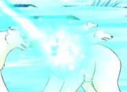 Roxy-taming the polar bears