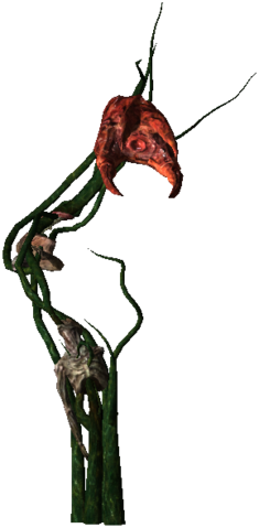 File:Bestiary Echinops full.png