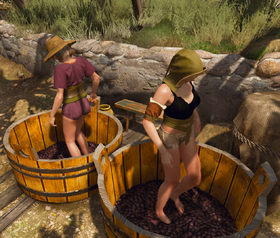 Tw3 wine producing
