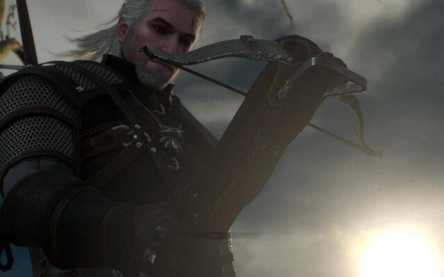 File:Tw3-screen-crossbow first time.jpg