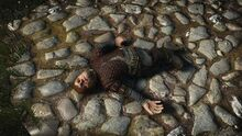 The witcher 3 game of thrones