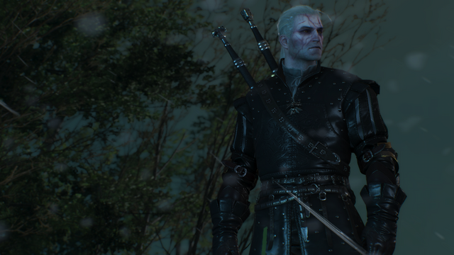 File:Geralt has imbibed three decoctions.png