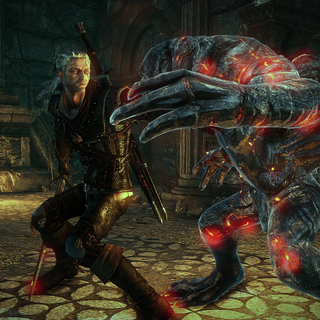 Geralt fighting one of them (the Witcher 2)