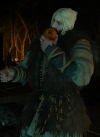 Tw3 Vilmar druid