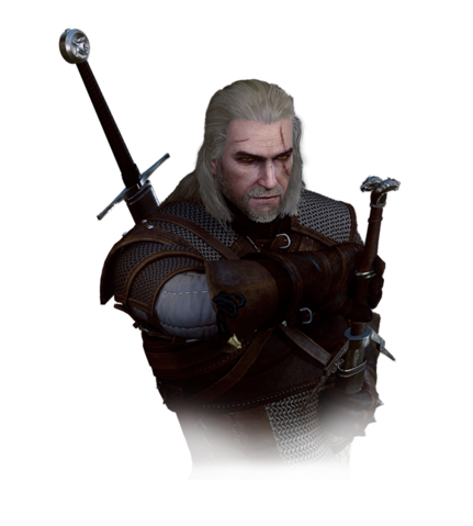 File:Tw3 geralt journal.png