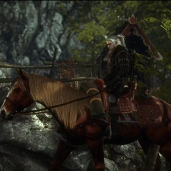 Roach, in The Witcher 2