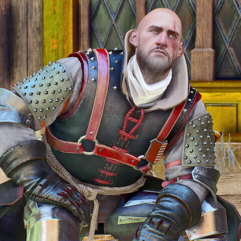 This is Novigrad