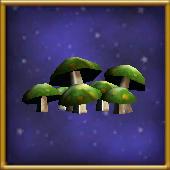 Diseased Mushrooms