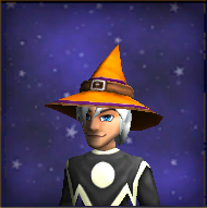 Double Sided Hat Male