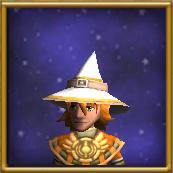 NovicesHatMale-WizardCityHats