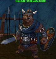 NPC GH Haldor Stormwatcher