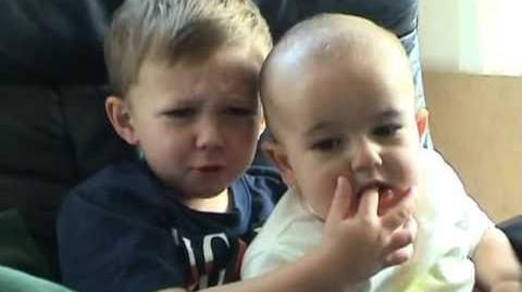 File:Charlie bit my finger - again !.jpeg