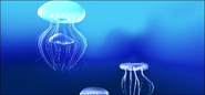 Plus!Underseas