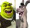 ShrekDonkey