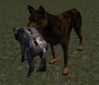 Zombie Pup 1