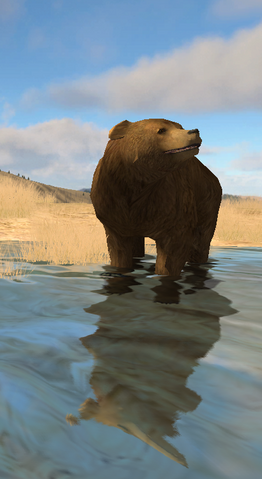 File:Grizzly Bear (2.5).png
