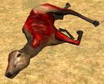 Elkcarcass 2