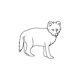 Wolfpupmale