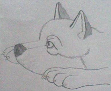File:Lone Wolf Faolan.jpg