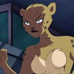 Cheetah - JLU