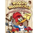 The Woody Woodpecker and Friends Classic Cartoon Collection Volume 2