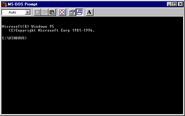 Windows95b msdos
