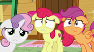 The Cutie Mark Crusaders worried S6E3