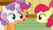 "Scootaloo and Sweetie Belle ""Sure am!"" S6E3"