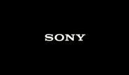 Sony (2013)