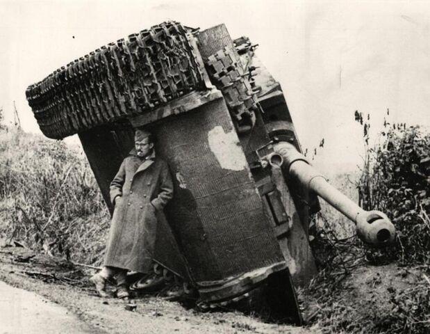 File:Tiger in Italy, 1944.jpg