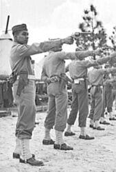 Pistol m1917 training 375