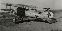 Albatros D.IV