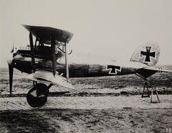 Albatros D.VII