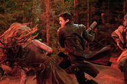 Hansel-et-Gretel-Witch-Hunters-Photo-Jeremy-Renner-01