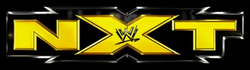 File:WWE NXT New Logo.png