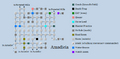 Zone 088 - Amadicia.png