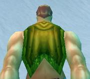 Greenweave Cloak, Snow Background, Human Male
