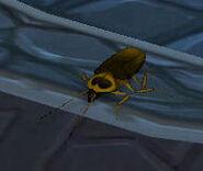 Magic Eater - Locust