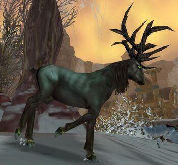 Blighted Elk