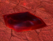 Crimson Crystal Shard