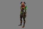 DH BE Armor Female 03 PNG