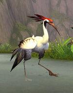 WhitefisherCrane