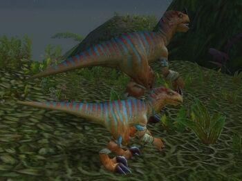 Young Stranglethorn Raptor