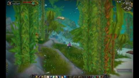 Cataclysm Kelp Forest Zone Review - TankSpot