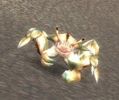 Raging Reef Crawler