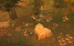 Chillwind camp