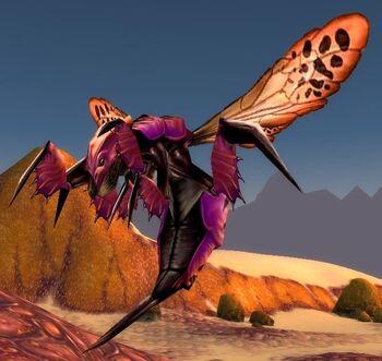 Centipaar Wasp