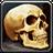 Inv misc bone humanskull 02