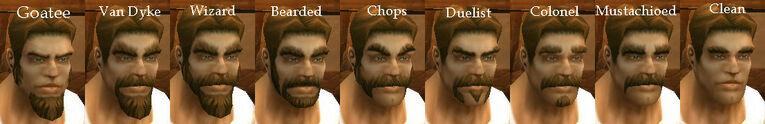 Human Male Facial Hair