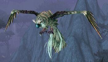 Arthorn's Sparrowhawk